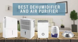 Complete Home Air humidifier Kind Costs + Installment